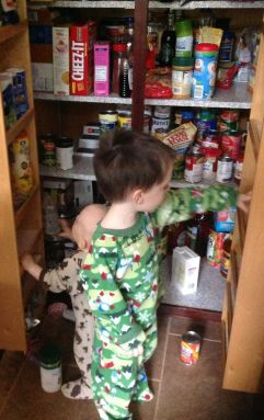 Pantry - Nan and Gary - Before (5)